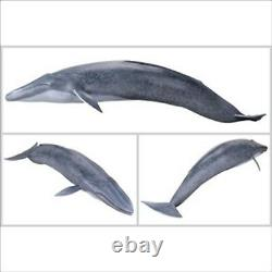 KAIYODO MSA-004 Blue Whale Mega Soft Advance Painted PVC Figure Japan NEW